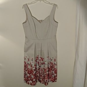 [WHBM] NWT Floral Fit Flare Dress